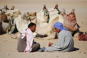 devis hommes desert algerie cityvol voyages tunisie afrique maroc vol ferry paiement en 4 fois devis